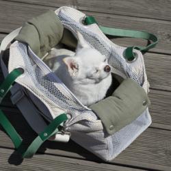 Практичная и удобная обувь для собак