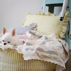 Необходимый аксессуар - лежанка для собаки, купить который можно в Москве