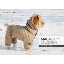 Комбинезон для вашей собачки