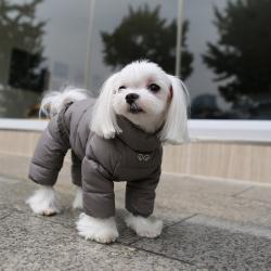 Комбинезоны для собак купить по доступной стоимости в Москве