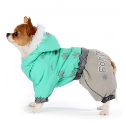 For my dogs – товары для собак