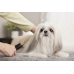 001299 Сухой шампунь для собак в виде пенки
