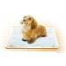01 Силиконовый коврик-лоток для собачьих пеленок. Средний