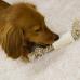 85728 Мозговая кость Дикого быка со скользящей веревкой для активной чистки зубов
