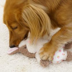 Игрушки для собак – дело серьезное