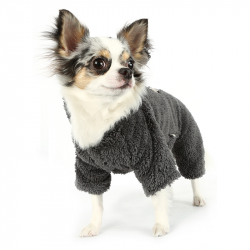 Одежда для собак на осень