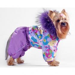 Стильные комбинезоны для йорка: универсальная одежда для маленьких собак