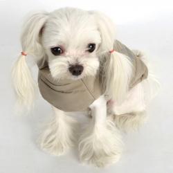 Осенние пальто для маленьких собак – хит нынешнего сезона!