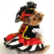 Карнавальные костюмы для собак (7)