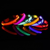 Электронные и светящиеся ошейники для собак (3)