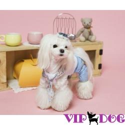 Одежда для собак в интернет магазине - что учесть при выборе.