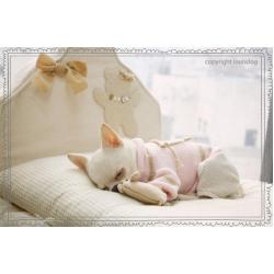 Louis Dog – сладкий сон вашего питомца