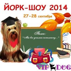 Магазин VIP-DOG примет участие на осеннем Йорк-Шоу 2014