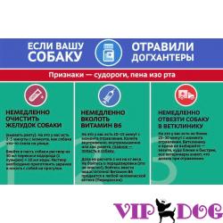 Зоополиция в Москве, или что предлагают общественные деятели