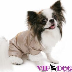 Одежда для собак и другие милые покупки