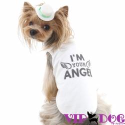 Одежда для собак: правильный выбор для йорка