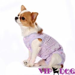 Одежда для собак: необходимость или дань моде?