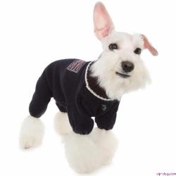 Вязаная одежда для собак – стильно, тепло и красиво!