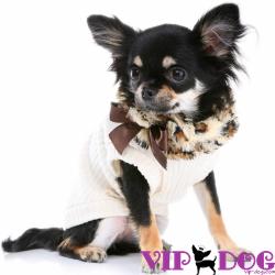 Всемирно известные бренды для собак: что выбираете вы?