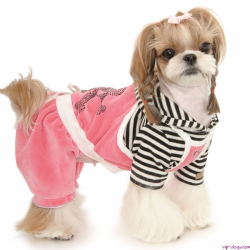 Одежда для собак и аксессуары