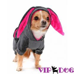 Одежда для собак (дешево интернет магазин) - мода или утепление?