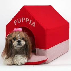 Личные домики для собак - это реальность