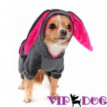 Велюровые и спортивные костюмы для собак