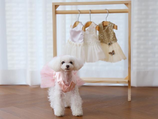 Одежда для собак купить в Москве