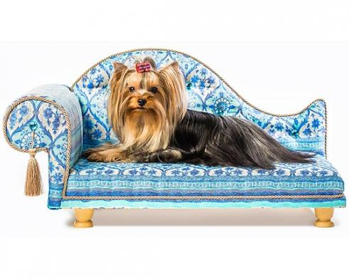 Royal Canin Feline Health Nutrition Dry Food for
