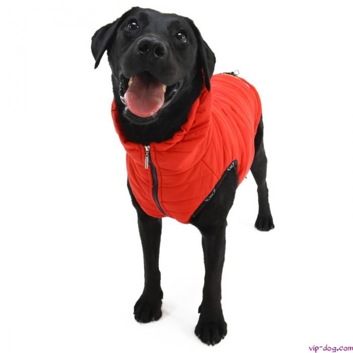 Подстилки для собак на алиэкспресс