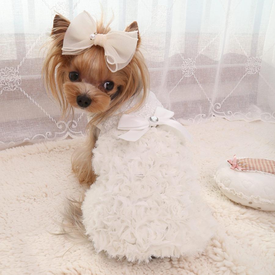 Свадебное платье собаки